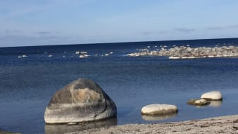 Havsutsikt från Visby och Almedalen