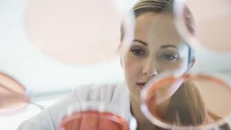 """Galderma har fått FDAs Breakthrough Therapy Designation, en så kallad """"genombrottsstatus"""", på det experimentella läkemedlet nemolizumab"""