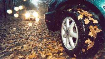 Nicht nur die Fahrweise ist der Jahreszeit anzupassen. Auch das Fahrzeug sollte vor Herbstbeginn noch einmal durchgecheckt werden. Foto: SIGNAL IDUNA