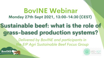 What is sustainable beef production? Are grass-based systems sustainable?