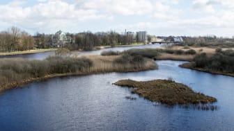 Vattenriket, biosfärområde i centrala Kristianstad, Skåne.  Foto: Leif Ingvarson