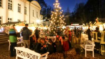 Louisenlunder Weihnachtsmarkt