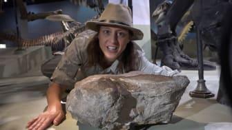 Dino-Doris berättar om dinosaurier under vårt digitala sportlov! Foto: Bengt Olofsson