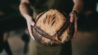 Mit dem SI-Meisterstück bringt die SIGNAL IDUNA eine neue Vielgefahrenpolice für Bäcker, Konditoren, Fleischer und Confiserien. Foto: Nathan Dumlao/unsplash.com