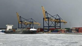 Gävle containerterminal, ostkustens största, ska fördubblas för att möta efterfrågan