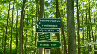 Mit rund 150 Kilometern ist die Uckermärker Landrunde der längste Rundwanderweg von sieben Qualitätswanderwegen in Brandenburg. Foto: TMB-Fotoarchiv/Steffen Lehmann.