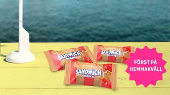 Sandwich Pepparkaka_1-1.jpg