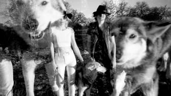 The Ghost Wolves   ( Photo: Jaqueline Badeaux)