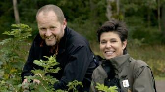 Slottsträdgårdsmästare John Taylor och chefsträdgårdsmästare Eva Rosén på Tjolöholm odlar för pollinatörerna. Foto: Anna Lind Lewin.