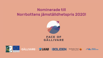 face-of-gallivare-norrbottens-jamstalldehetspris-2020-naringsliv.png