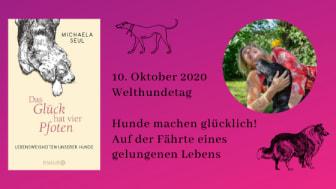 Welthundetag am 10. Oktober 2020: Das Glück hat vier Pfoten
