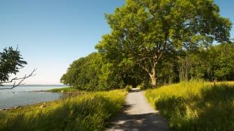 Søndre Jeløy landskapsvernområde