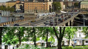 Låt naturens ljud minska stressen i städerna