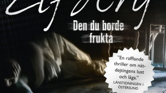 Den du borde frukta, pocket av Ingrid Elfberg