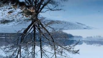 """Publikumspreis für Tabea Könneckes Foto """"Upside-Down"""""""