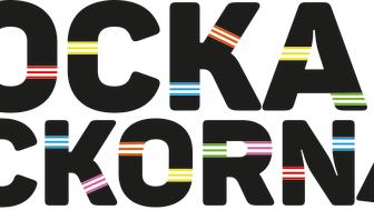 Rocka Sockorna-festival 18/3 på Världskulturmuseet i Göteborg med prisutdelningar, prova på-aktiviteter och Robin Stjernberg på scen