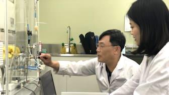 En av anledningarna till förekomsten av radon i de koreanska madrasserna tros vara förekomsten och användningen av mineralet monazit. Bild från Hanil Nuclears laboratorium.