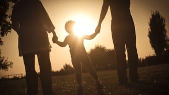 Children not heard in domestic violence cases