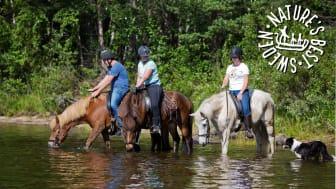 Turridning i sommar hos Horses of Taiga - Foto Rianne Kindt