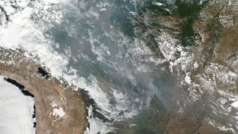 Foto fra NASA af skovbrandene.