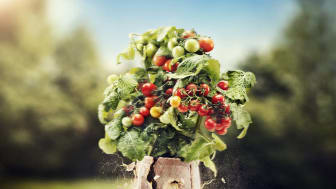 Fullt av växtkraft på Trädgårdsmässan