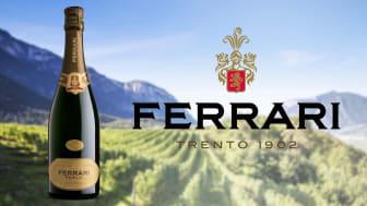 Vingårdarna i Trento DOC och Ferrari Perlé 2014