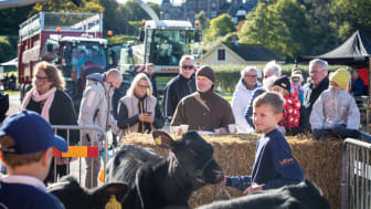 I år firar Tjolöholms skördefest 10-årsjubileum.