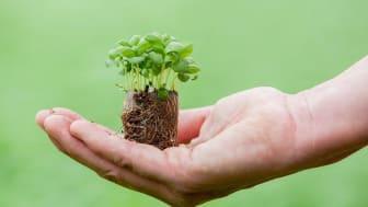 Ekologi och hållbarhetstänk står i fokus tillsammans med kvalitet och lönsamhet.