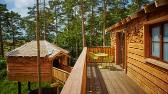 Luxurious accommodation reaches new heights at Whinfell Forest, Cumbria