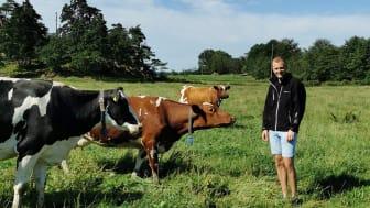 Christian Bengtsson har visat att DNA-profiler på kvigor ger en bra bild av djurens potential som mjölkkor. Foto: Camilla Svensson Koed