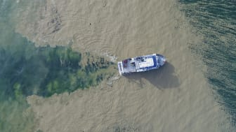 Forskningsfartyget Electra af Askö stävar fram genom en tjock algblomning. Foto: Östersjöcentrum