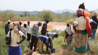 Manyirani jordbruksprojekt i Kenya får stöd genom Svenska missionsrådets särskilda satsning på resiliens. Foto: Job Mainye
