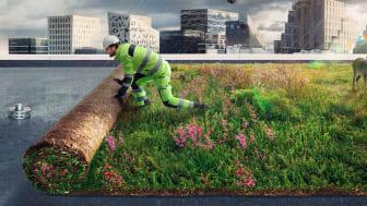 Illustrasjon av BlueProof Green fra Protan og Bergknapp