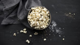 Wildcorn_Popcorn_CannonBall_007