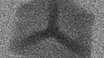 Mikroskopisk järnrik fas som bildats i smält aluminium