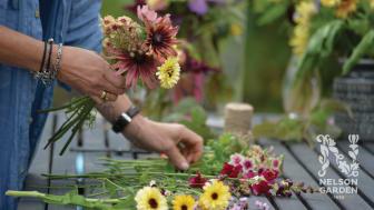 Odla enkelt där du är – frönyheter 2022 från Nelson Garden