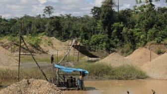 Den illegale minedrift ødelægger skoven og forurener vander med kviksølv. Foto: Vanessa Romo, Mongabay