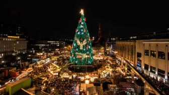 1. Weihnachtsbaum in Dortmund