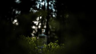 En vänlig käftsmäll från Norrbotten – resan längs Totempålen fortsätter