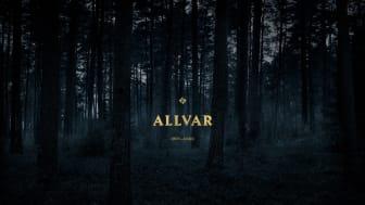 Allvar Underwear - profil