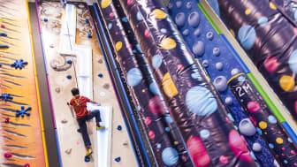 Indoor Climbing Adventure