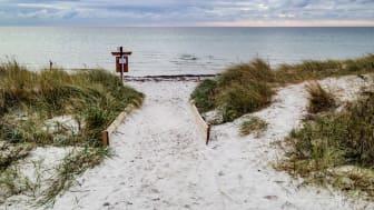 Studenterna undersöker sanddynernas roll i att skydda samhället från stigande havsnivåer och havets bränningar.
