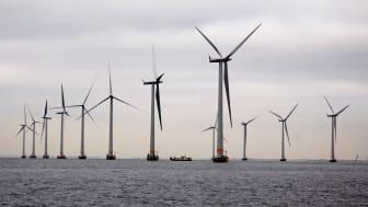 Lillgrunds vindkraftspark förser AkzoNobels anläggningar med förnyelsebar energi.