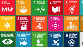 FNs 17 globala mål