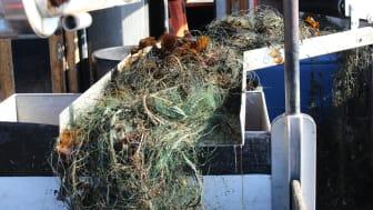Yrkesfiskare kan nu söka stöd för att samla in förlorade fiskeredskap i havet. Bild: Ulf Stahre