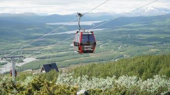 Hemavan Gondol lockar rekordmånga besökare även sommartid.