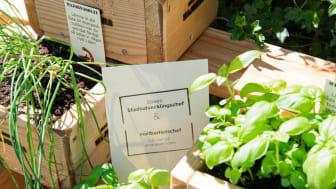 Älvstranden Utvecklings team för Hållbar Stadsutveckling på plats