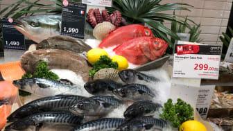 Den norske makrellen skal gjøres enda mer synlig i Sørøst-Asia i løpet av 2021. FOTO: Norges sjømatråd
