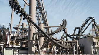 Monster - King of Roller Coasters