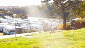 För 15:e gången utses Daftö Resort till Superplatz av ADAC.